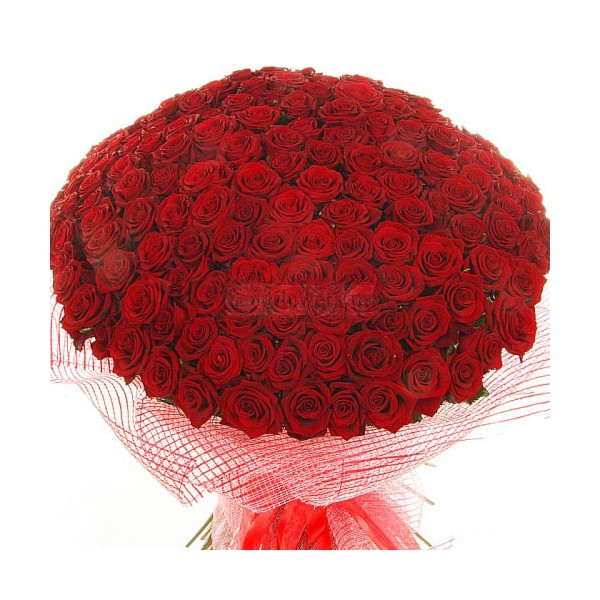 Букет роз с поздравлением дня рождения фото 82